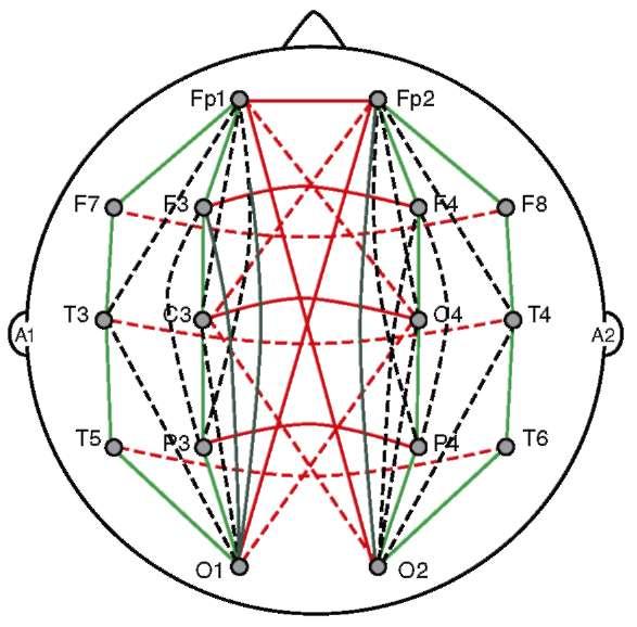 Полная схема анализируемых когерентных связей электроэнцефалограммы