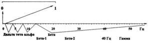 Частотные диапазоны в спектре ЭЭГ
