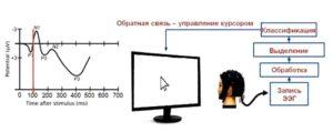 Выделение и формирование ЭЭГ-паттерна методом ЗВП