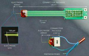 Проба (многоканальный массив микроэлектродов) Neuronexus