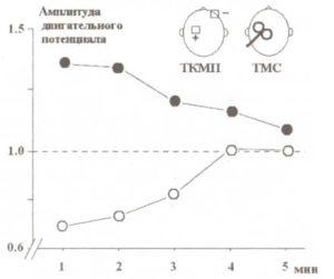 Специфичность влияния ТКМП на возбудимость двигательной коры в зависимости от полярности