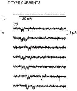 Са2+-ток через одиночный Са2+-канал Т-типа