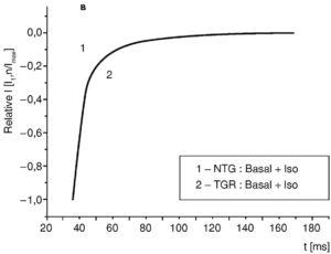 Фазы инактивации Ca2+-тока L-типа