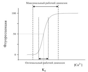 Зависимость флуоресценции Са2+-чувствительного индикатора от концентрации Са2+
