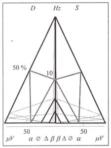 Модель структуры ритмов электроэнцефалограммы: